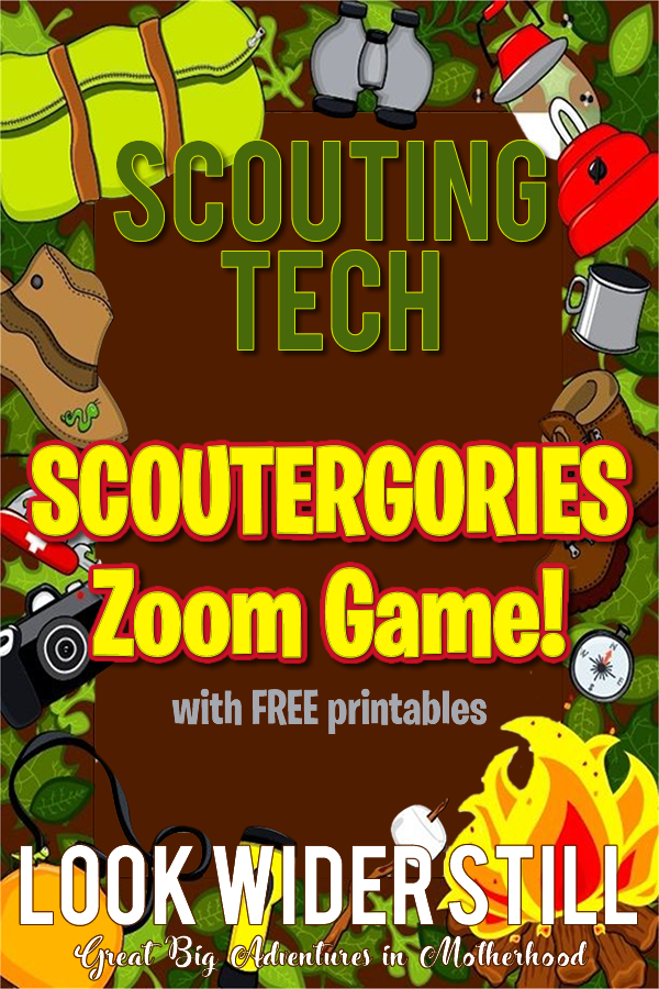 Scouting Activities Scoutergories Zoom Game Look Wider Still